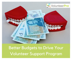 See volpro.net for volunteer support tools.