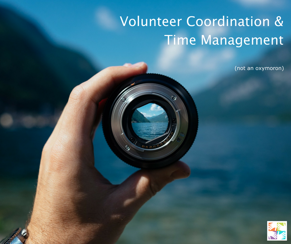 Volunteer Coordination and Time Management at volpro.net