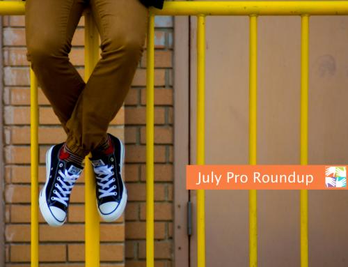 July Pro Roundup for Volunteer Coordinators