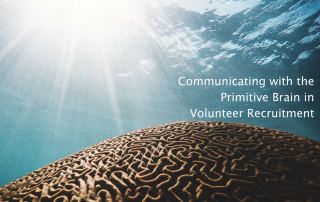 volunteer recruitment ads at volpro.net