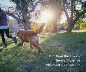 volunteer appreciation at volpro.net
