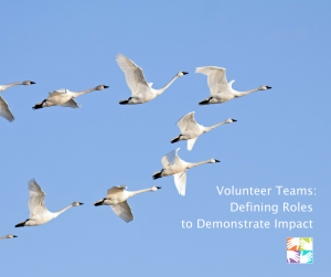 volunteer teams at volpro.net