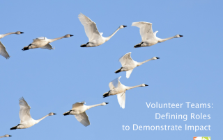 volunteer teams at volpro.net