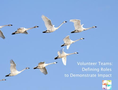Volunteer Teams: Defining Roles toDemonstrate Impact