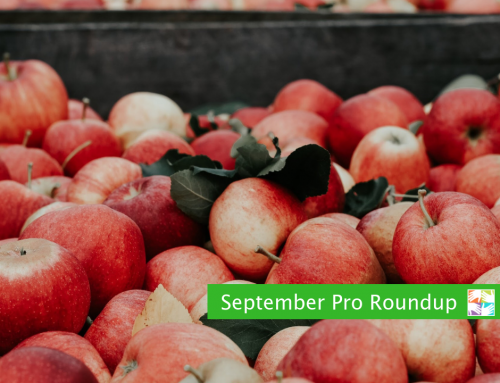 September Pro Roundup for Volunteer Coordinators