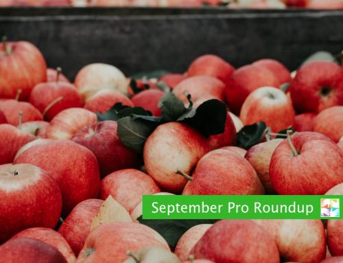 September Pro Roundup for Volunteer Coordinators
