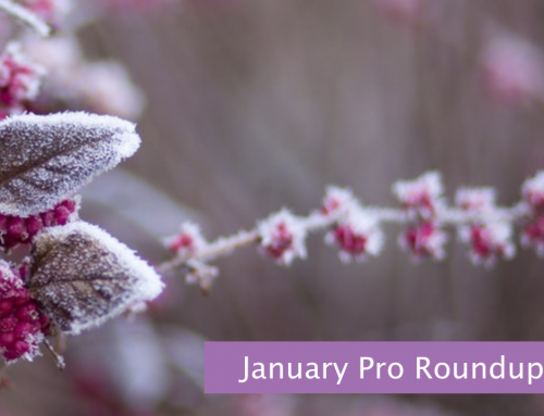 January Pro Roundup for Volunteer Coordinators