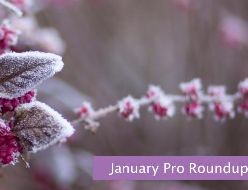 January Pro Roundup for Volunteer Coordinators