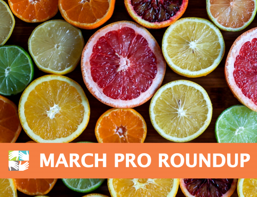 March Pro Roundup for Volunteer Coordinators: Empowered Leadership