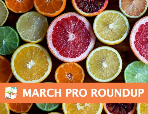 March Pro Roundup for Volunteer Coordinators: Empowered Leadership
