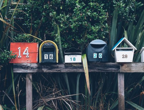 How to Craft Volunteer Newsletters People Actually Want to Read