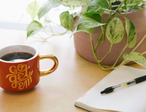 Pro Roundup for Volunteer Coordinators: The Guide You Need to Crush Your Volunteer Program Goals