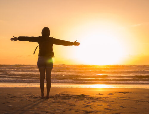 Pro Roundup: Gratitude & Happiness